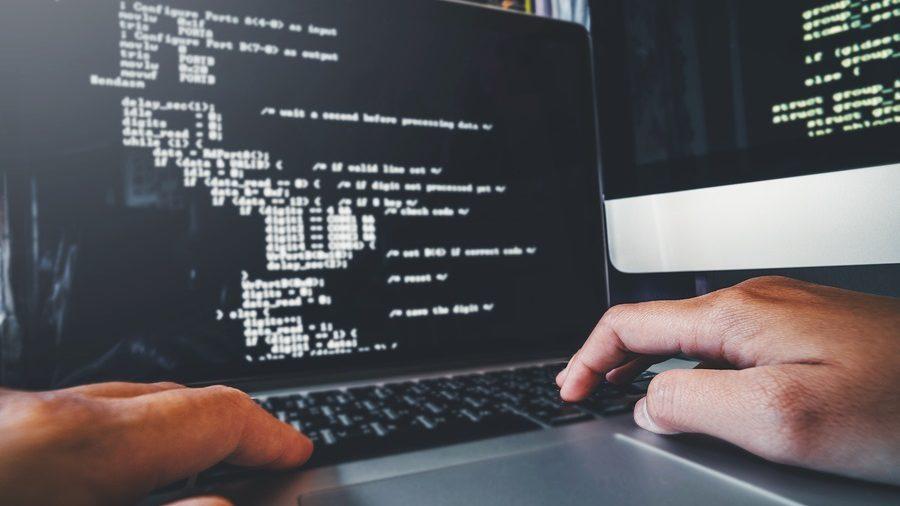 A 'Bullish' Year for IT Jobs